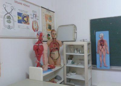 scoala-postliceala-sf-iosif-manechin_(7)